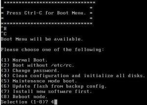 NetApp_BootMenu