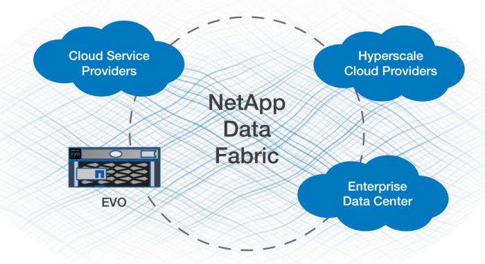 NetApp EVO:RAIL